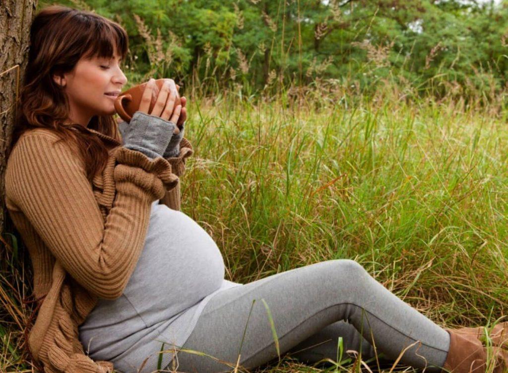 Herramientas clave para la fertilidad